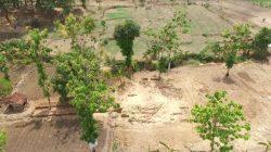 Destinasi Wisata Alam Bernama Taman Wisata Airlangga akan Hadir di Sekitar Situs Candi Pataan